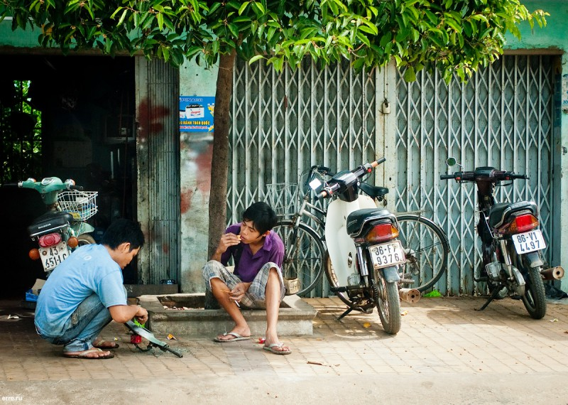 Вьетнамцы, занятые вьетнамскими делами